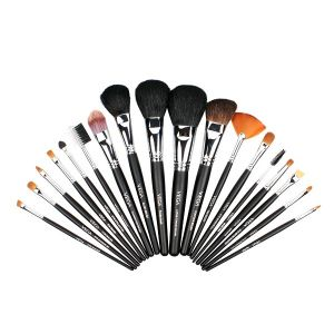 Set of 20 Brushes