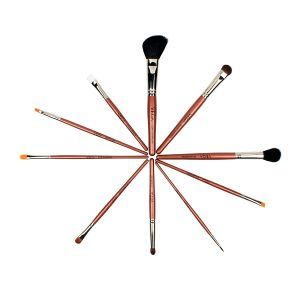 Set of 10 Brushes